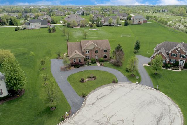 9 Harrington Court, Hawthorn Woods, IL 60047 (MLS #10252227) :: Helen Oliveri Real Estate