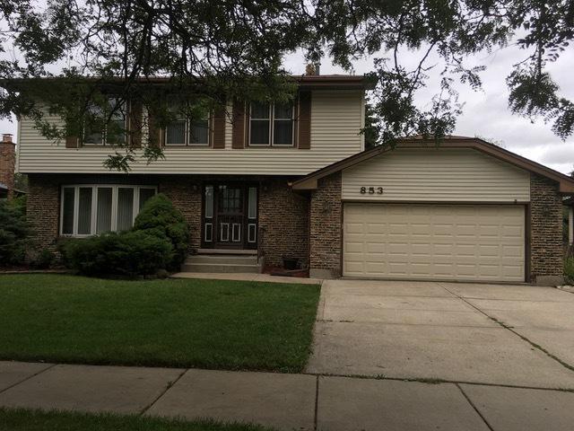 853 School Avenue, Matteson, IL 60443 (MLS #10252270) :: The Wexler Group at Keller Williams Preferred Realty