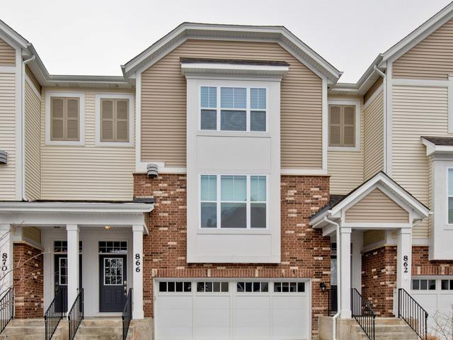 866 W Chase Lane, Palatine, IL 60067 (MLS #10252360) :: Helen Oliveri Real Estate