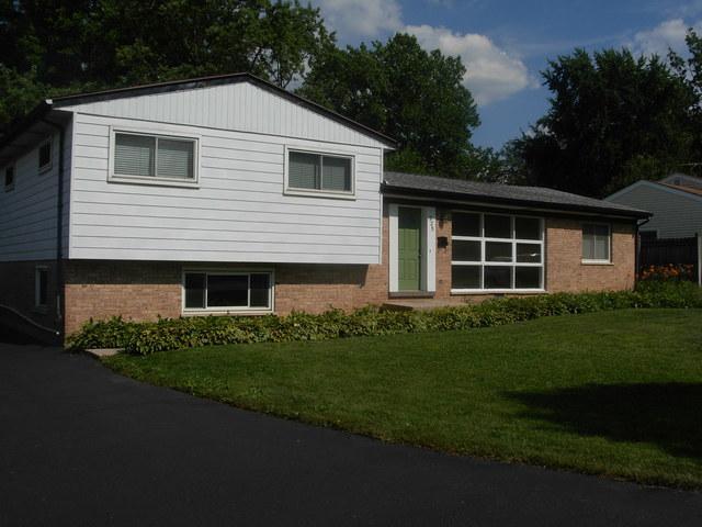 225 Kellogg Place, Wheaton, IL 60187 (MLS #10252483) :: The Jacobs Group