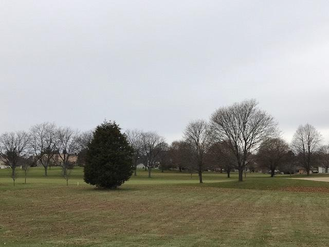 LOT 11 Longmoor Drive, Lakewood, IL 60014 (MLS #10252490) :: Berkshire Hathaway HomeServices Snyder Real Estate