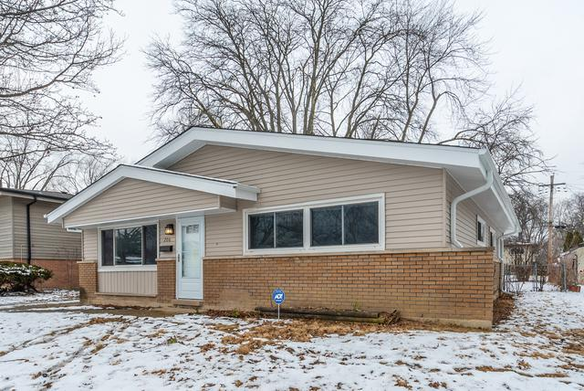 206 Early Street, Park Forest, IL 60466 (MLS #10252495) :: The Wexler Group at Keller Williams Preferred Realty