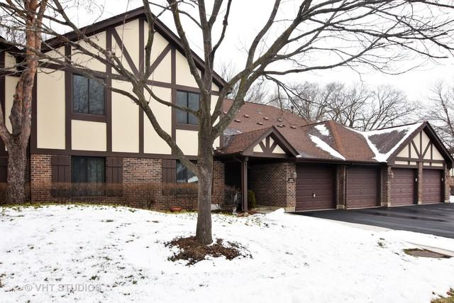 1012 Harbour Court 2A, Wheeling, IL 60090 (MLS #10252634) :: Helen Oliveri Real Estate