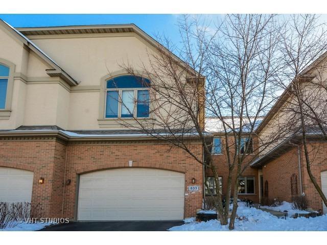 833 Maple Avenue #833, Palatine, IL 60067 (MLS #10252866) :: Ani Real Estate