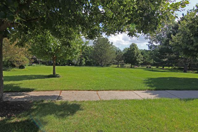 6590 Revere Court, Gurnee, IL 60031 (MLS #10252949) :: Berkshire Hathaway HomeServices Snyder Real Estate