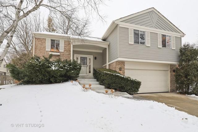 14 Annapolis Drive, Vernon Hills, IL 60061 (MLS #10253004) :: Helen Oliveri Real Estate