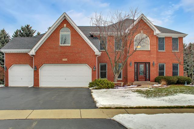 704 Hayle Court, Naperville, IL 60540 (MLS #10253200) :: Baz Realty Network   Keller Williams Preferred Realty