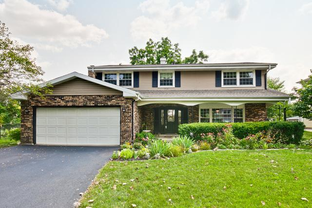 611 E Princeton Street, Palatine, IL 60074 (MLS #10253527) :: Baz Realty Network | Keller Williams Preferred Realty