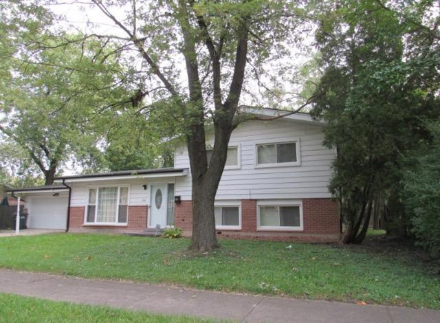 335 Early Street, Park Forest, IL 60466 (MLS #10253842) :: The Wexler Group at Keller Williams Preferred Realty