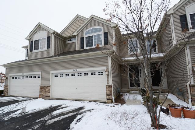 649 S Jade Lane, Round Lake, IL 60073 (MLS #10254010) :: Ryan Dallas Real Estate