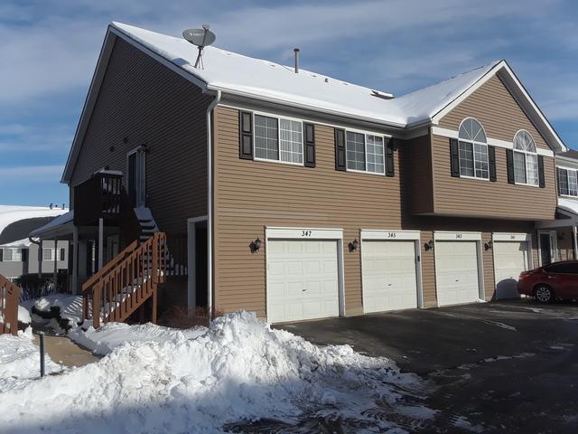 347 Village Creek Drive #347, Lake In The Hills, IL 60156 (MLS #10254019) :: Ryan Dallas Real Estate