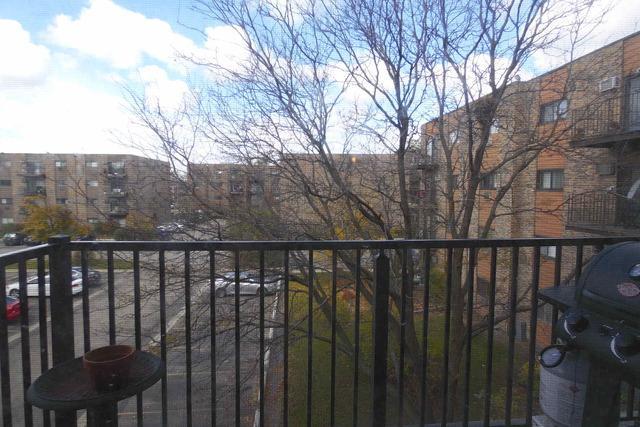 8923 N Knight Avenue #309, Des Plaines, IL 60016 (MLS #10254022) :: Ryan Dallas Real Estate