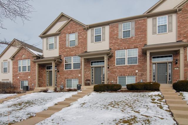 204 Devoe Drive, Oswego, IL 60543 (MLS #10254631) :: Baz Realty Network | Keller Williams Preferred Realty