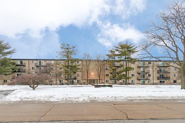 2315 E Olive Street 1C, Arlington Heights, IL 60004 (MLS #10255963) :: Baz Realty Network | Keller Williams Preferred Realty