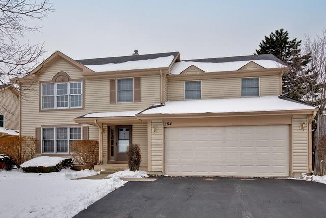 284 Southgate Drive, Vernon Hills, IL 60061 (MLS #10256160) :: Baz Realty Network | Keller Williams Preferred Realty