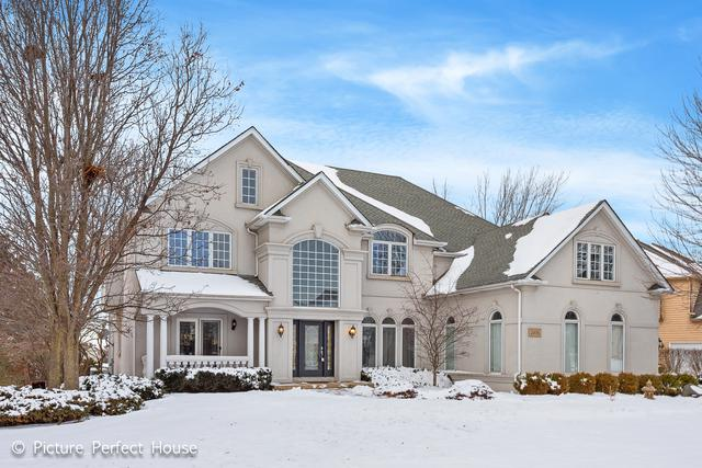 2456 Fawn Lake Circle, Naperville, IL 60564 (MLS #10256183) :: Baz Realty Network | Keller Williams Preferred Realty
