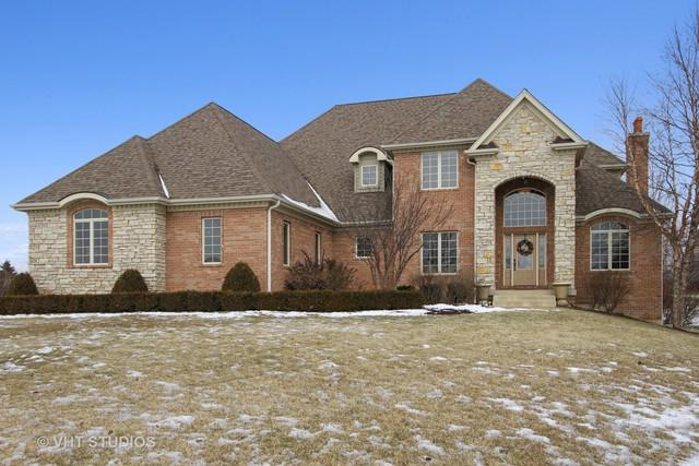 2903 Hanging Fen Court, Johnsburg, IL 60051 (MLS #10256536) :: The Dena Furlow Team - Keller Williams Realty