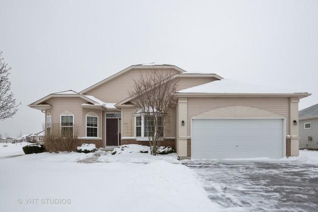 904 Monroe Avenue, Mchenry, IL 60050 (MLS #10257084) :: The Dena Furlow Team - Keller Williams Realty