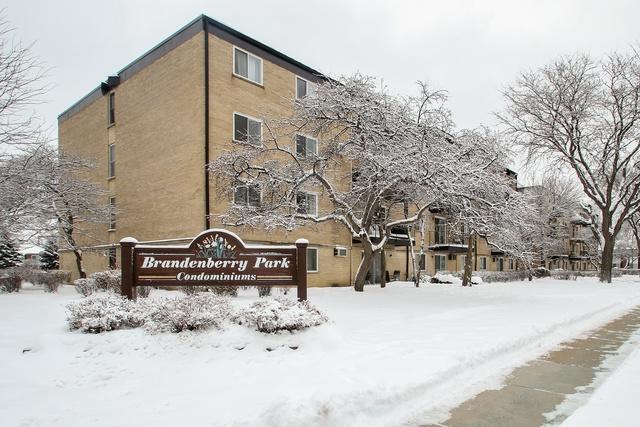 2424 E Oakton Street 3F, Arlington Heights, IL 60004 (MLS #10257726) :: Baz Realty Network | Keller Williams Preferred Realty