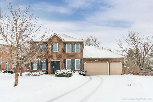 1198 Homestead Drive, Yorkville, IL 60560 (MLS #10258014) :: Baz Realty Network | Keller Williams Preferred Realty