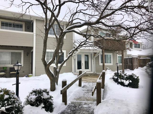 1006 Farwell Court #1006, Gurnee, IL 60031 (MLS #10258267) :: Baz Realty Network | Keller Williams Preferred Realty