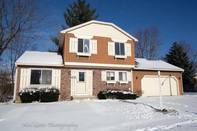 1329 Duquesne Avenue, Naperville, IL 60565 (MLS #10258888) :: Ryan Dallas Real Estate