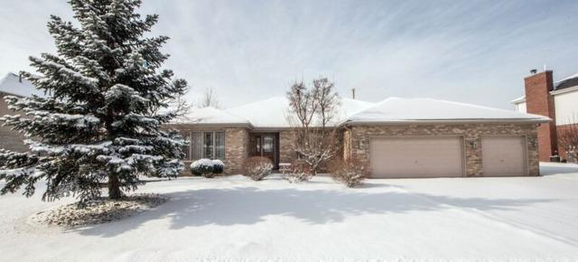 22630 Joshua Drive, Frankfort, IL 60423 (MLS #10259250) :: John Lyons Real Estate
