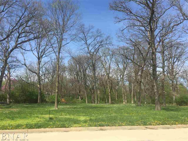 Lot 1 Briar Drive, Bloomington, IL 61705 (MLS #10259414) :: Janet Jurich Realty Group