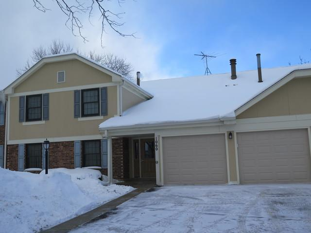 1060 Driftwood Court D2, Wheeling, IL 60090 (MLS #10260978) :: Baz Realty Network | Keller Williams Preferred Realty