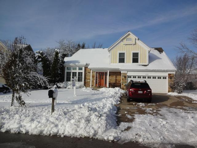 332 Wentworth Lane, Bartlett, IL 60103 (MLS #10261180) :: Baz Realty Network | Keller Williams Preferred Realty