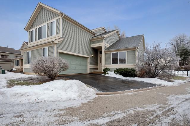711 Sandy Pointe Lane, Round Lake Park, IL 60073 (MLS #10261728) :: John Lyons Real Estate