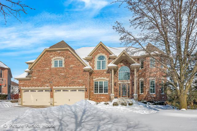 2408 Williamstown Court, Naperville, IL 60564 (MLS #10262357) :: Baz Realty Network | Keller Williams Preferred Realty