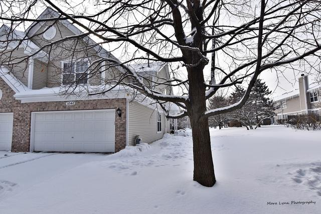 1040 Sheridan Circle, Naperville, IL 60563 (MLS #10262721) :: Baz Realty Network | Keller Williams Preferred Realty