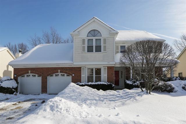491 Satinwood Terrace, Buffalo Grove, IL 60089 (MLS #10263142) :: Baz Realty Network | Keller Williams Preferred Realty