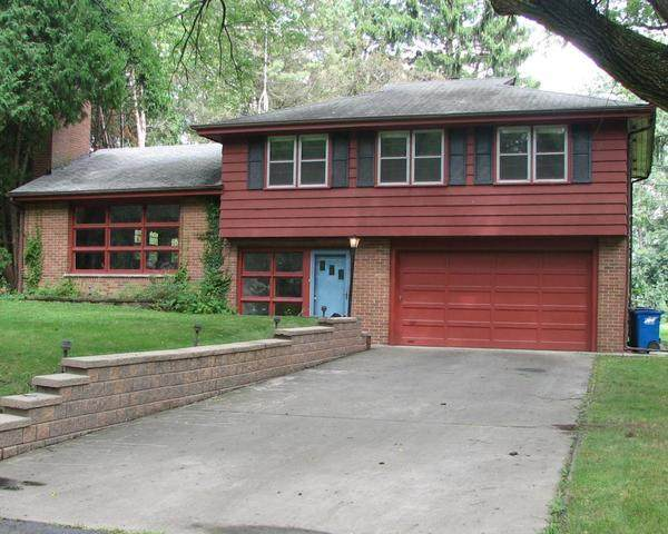 25W150 Fairmeadow Lane, Naperville, IL 60563 (MLS #10263162) :: The Wexler Group at Keller Williams Preferred Realty