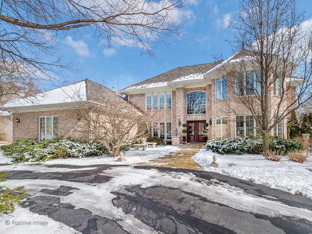 117 Circle Ridge Drive, Burr Ridge, IL 60527 (MLS #10263647) :: Baz Realty Network | Keller Williams Preferred Realty