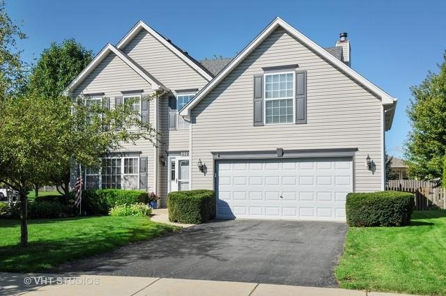 2923 Portsmith Court, Naperville, IL 60564 (MLS #10263918) :: Baz Realty Network | Keller Williams Preferred Realty