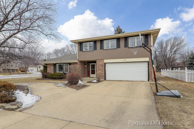 400 Ashwood Drive, Schaumburg, IL 60193 (MLS #10264118) :: Baz Realty Network | Keller Williams Preferred Realty