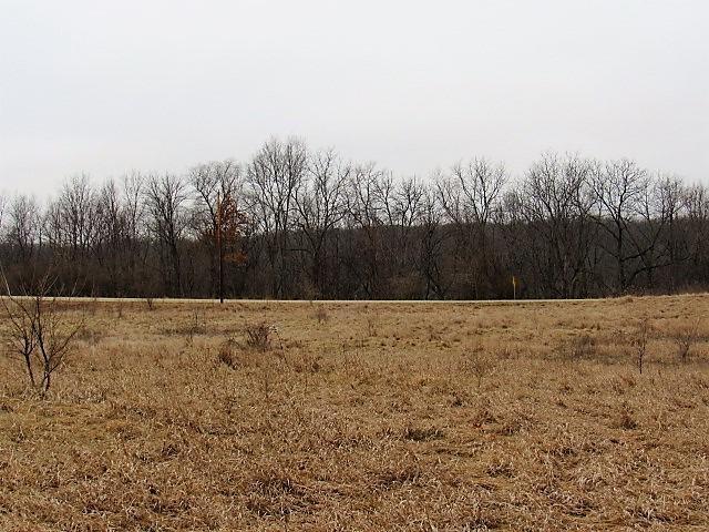 11550 Lake Road, DEWITT, IL 61735 (MLS #10264600) :: Berkshire Hathaway HomeServices Snyder Real Estate