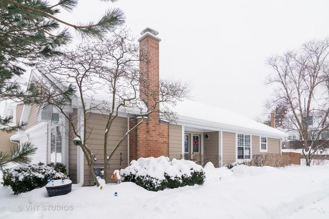 60 White Pine Drive, Schaumburg, IL 60194 (MLS #10264693) :: Baz Realty Network | Keller Williams Preferred Realty