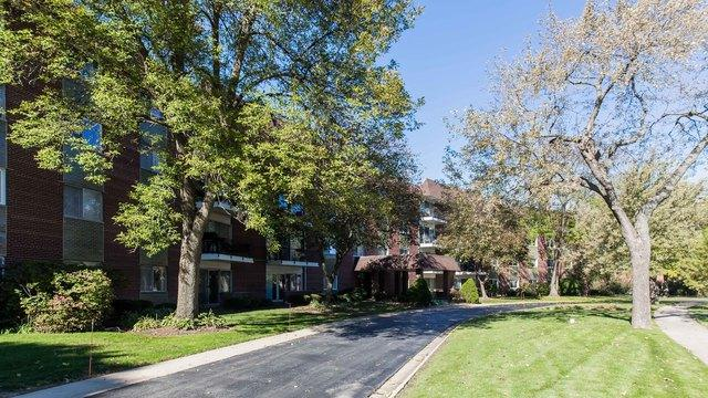1030 S Fernandez Avenue 1B, Arlington Heights, IL 60005 (MLS #10265734) :: Baz Realty Network | Keller Williams Preferred Realty