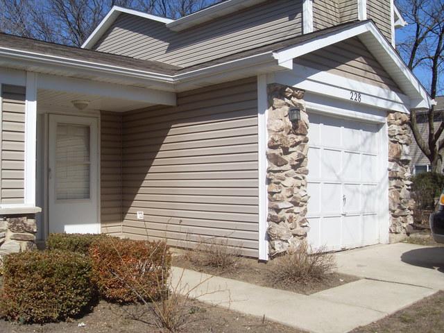 228 Pebble Creek Drive, Bloomingdale, IL 60108 (MLS #10265926) :: Baz Realty Network | Keller Williams Preferred Realty