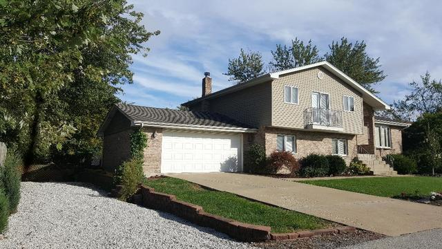 9919 S 87TH Court, Palos Hills, IL 60465 (MLS #10266119) :: The Wexler Group at Keller Williams Preferred Realty