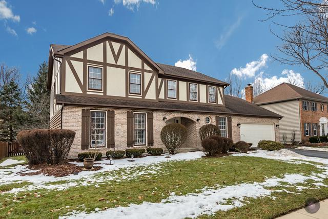 440 Du Pahze Street, Naperville, IL 60565 (MLS #10266379) :: Baz Realty Network | Keller Williams Preferred Realty