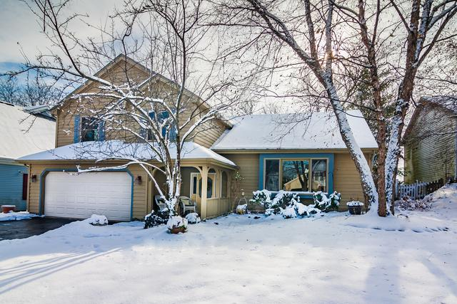 339 Carl Sands Drive, Cary, IL 60013 (MLS #10266494) :: Baz Realty Network | Keller Williams Preferred Realty
