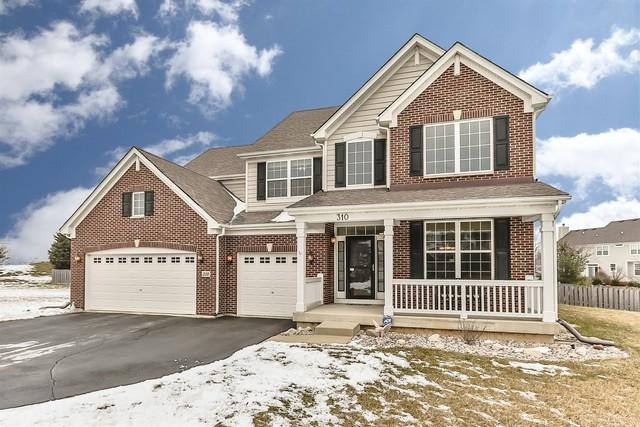 310 Sonora Drive, Elgin, IL 60124 (MLS #10266530) :: Baz Realty Network | Keller Williams Preferred Realty