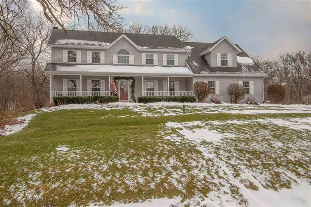 9551 N Blaine Drive, Byron, IL 61010 (MLS #10266784) :: The Mattz Mega Group