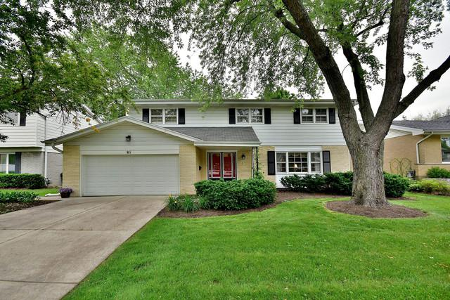 811 S Waverly Place, Mount Prospect, IL 60056 (MLS #10267034) :: Baz Realty Network | Keller Williams Preferred Realty