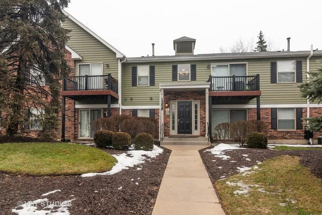 1308 Mc Dowell Road #203, Naperville, IL 60563 (MLS #10267277) :: Baz Realty Network | Keller Williams Preferred Realty