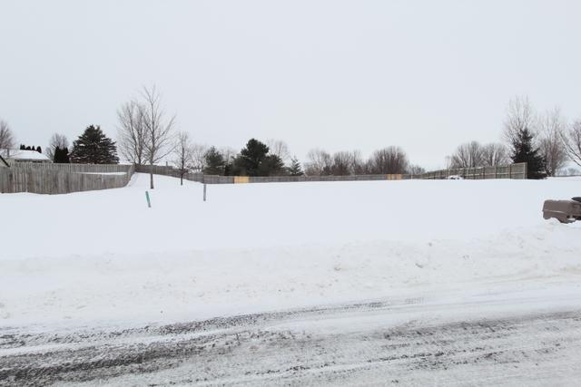 111 Sunny Hill Drive, Davis Junction, IL 61020 (MLS #10267380) :: The Dena Furlow Team - Keller Williams Realty